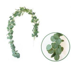 liane végétale